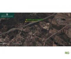 Terreno Rústico com 4,5 ha na Encosta Sul Serra da Esperança