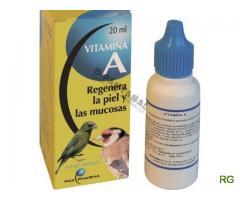 Vitamina a papagaio, canario, piriquito, arara, agaporne, roseicoller, caturra, pintassilgo, fisher